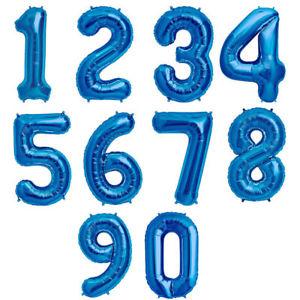 Sinised numbrid